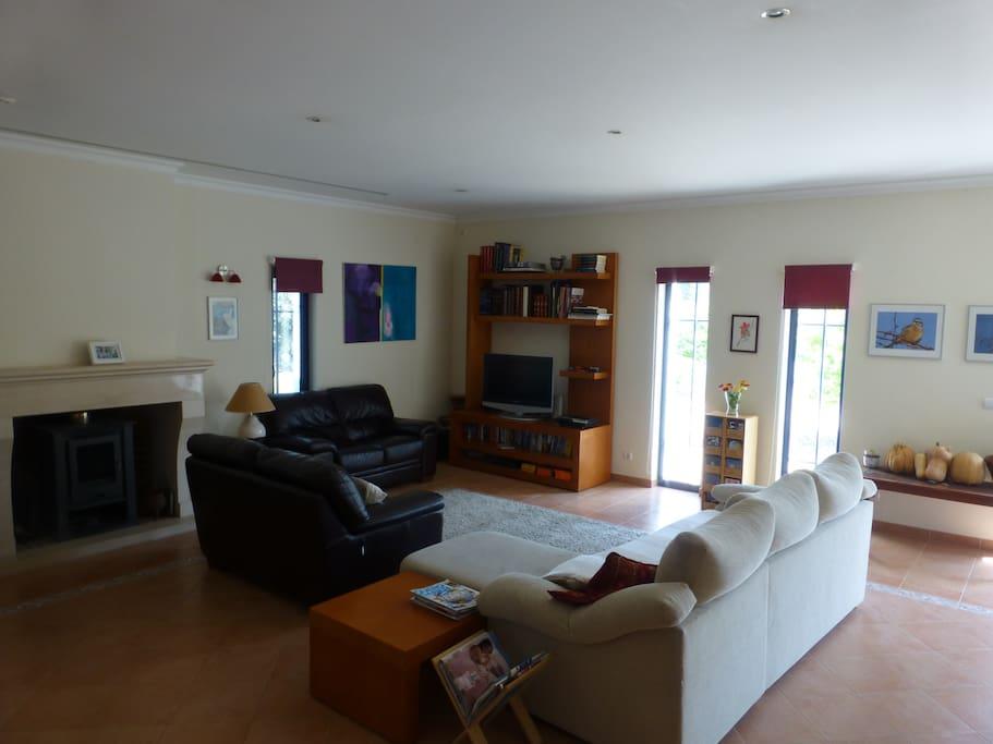 Sala de estar com lareira e televisão ao fundo