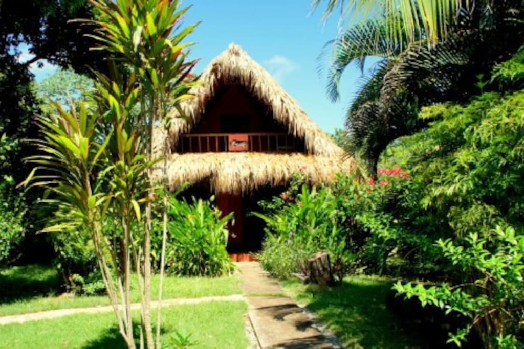 Casa del Gato is located in a large, tropical garden with 2 other bungalows.