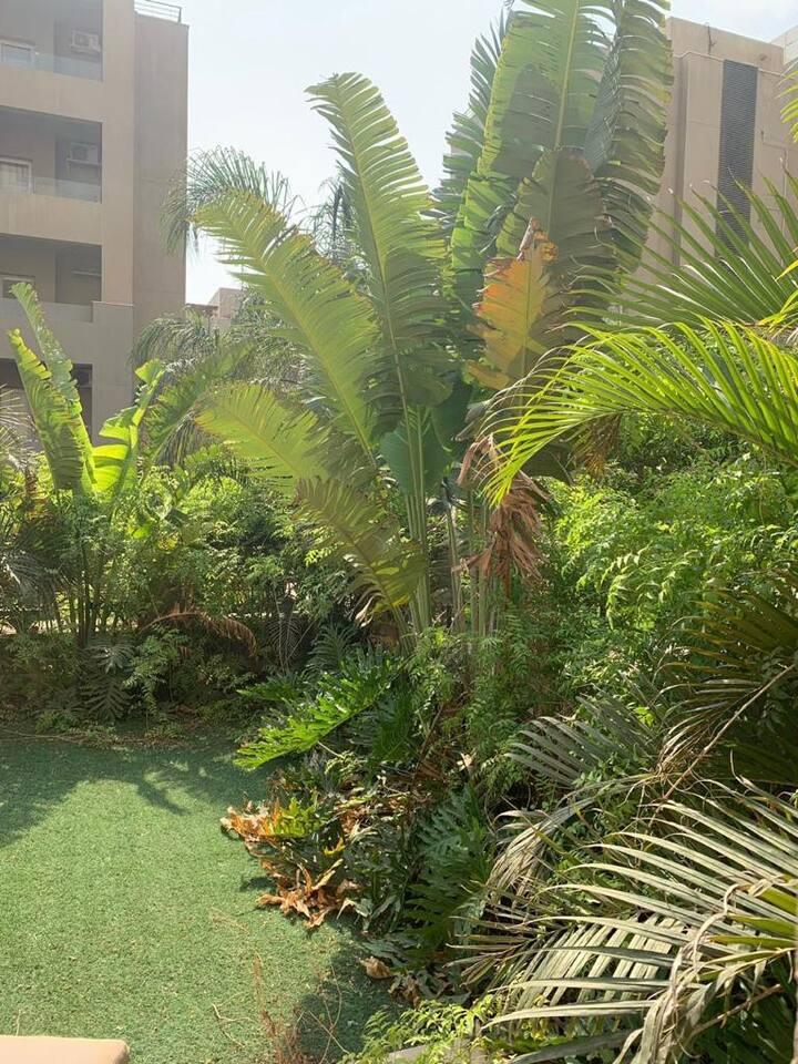 Ultra Super lux garden Apt in the Village - AUC