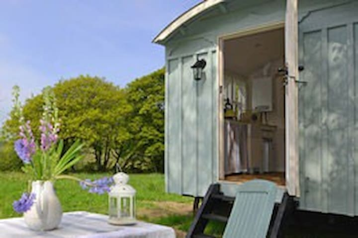 Handmade shepherd hut by the sea - Llandysul - Hut