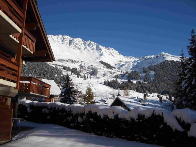 View of the ski runs