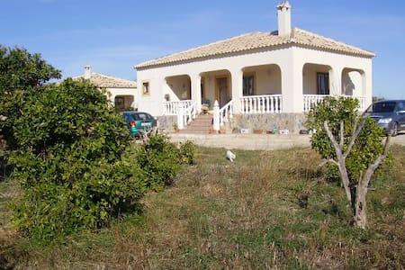 Stay in the beautiful Vega Baja  - Jumilla - Villa