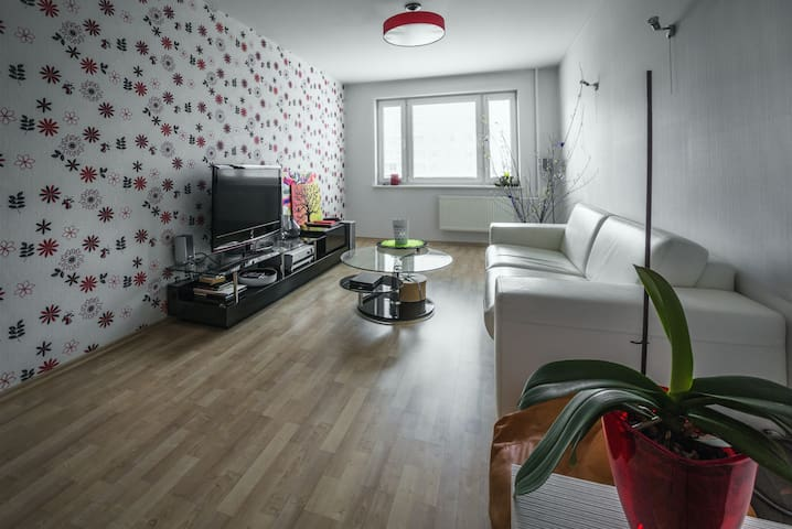 Modern 1 bedrom, lovely appartment - Riga