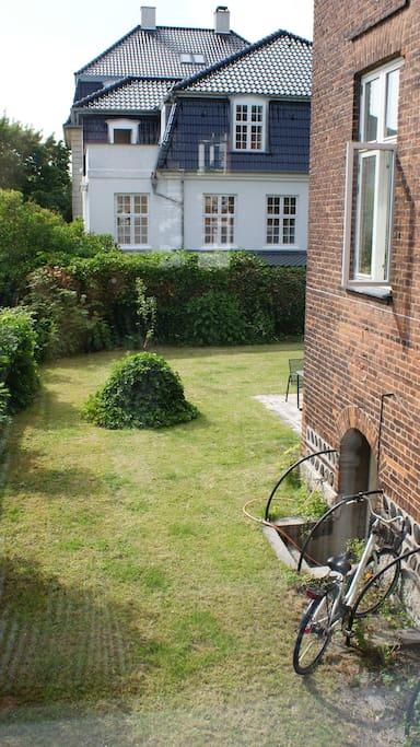 View from bedroom onto garden
