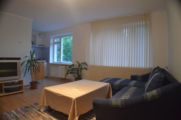 Apartment  KaevuShop