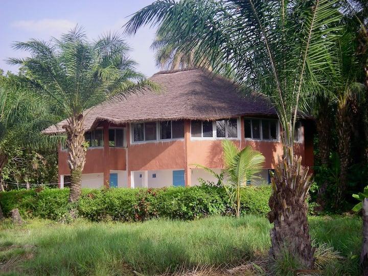 Maison avec vue sur la mangrove