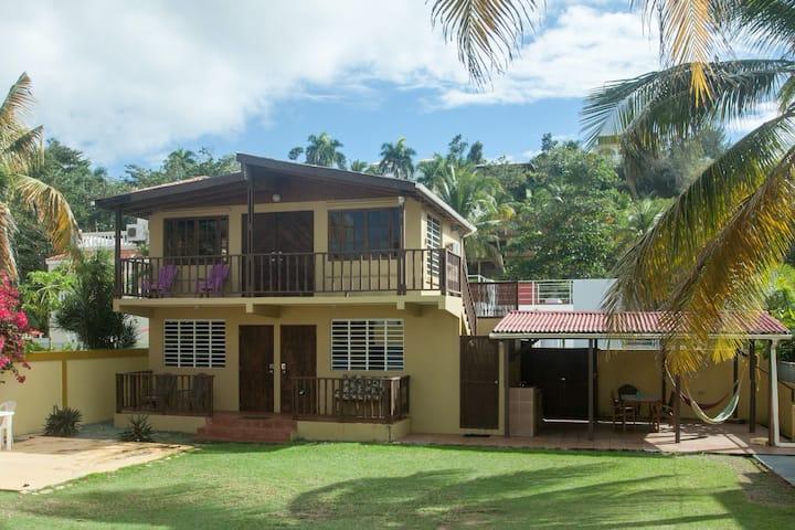 Kasa Maui - Palm Tree Apt Across from Sandy Beach!