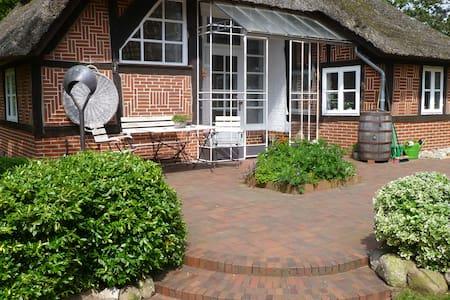 5 Sterne Ferienhaus Siedschelje - Schwanewede