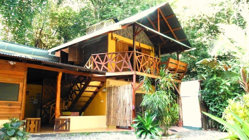 Pavillon dans la jungle  - Puerto Viejo de Talamanca - Departamento