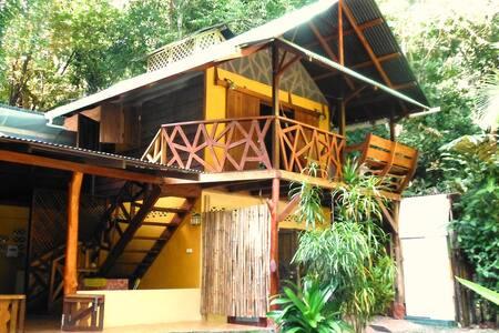 Pavillon dans la jungle