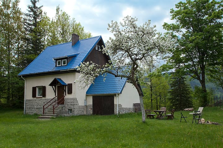 Lovely house in the mountain - Borowice - 一軒家