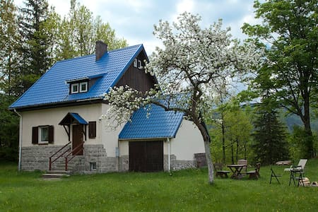 Lovely house in the mountain - Borowice