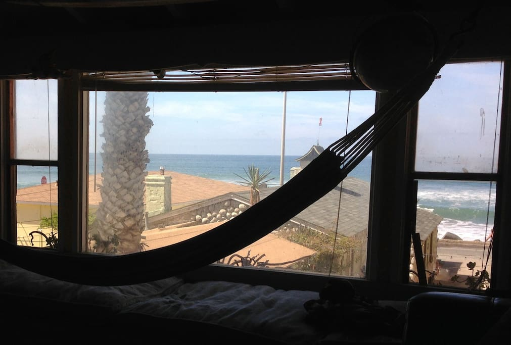View from the living room and hammock