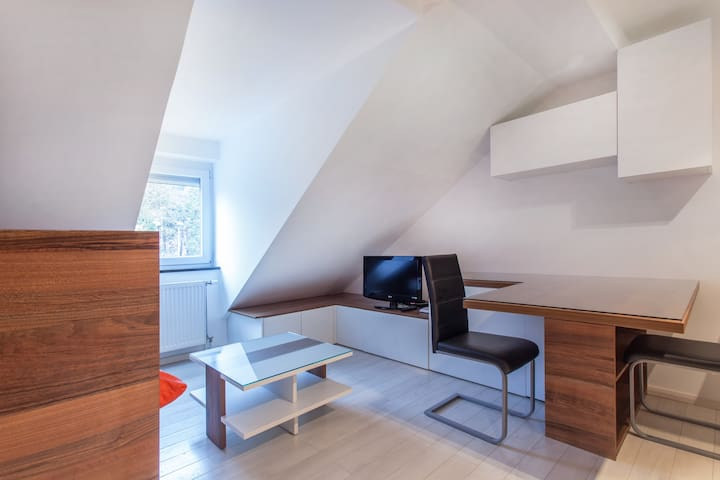Cosy apartment in city center - Ljubljana - Lakás