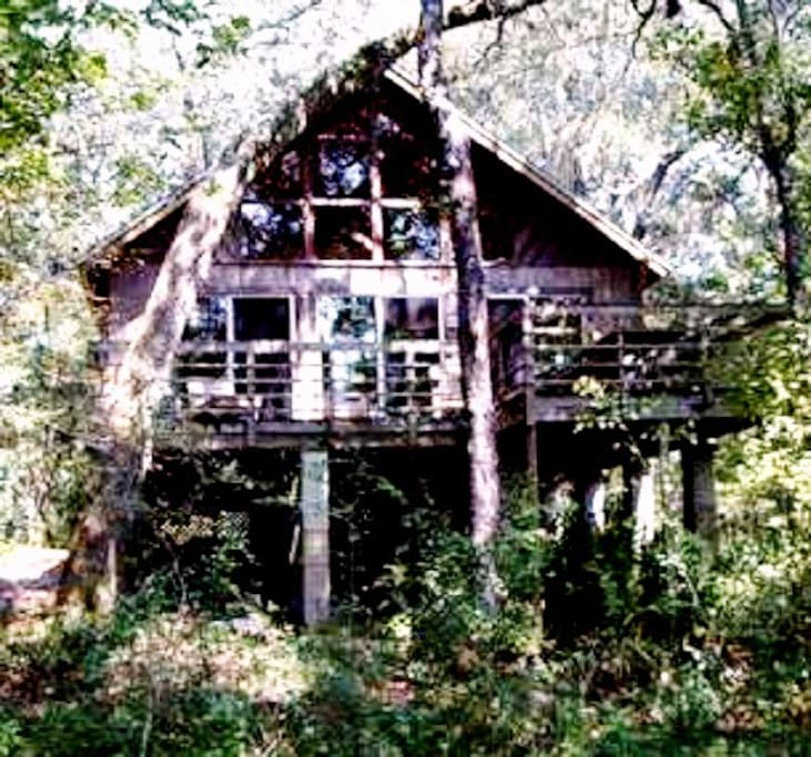 Back Houses For Rent: Suwannee River Cabin With Kayaks