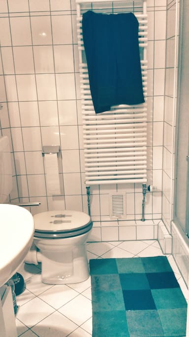 the shared bathroom. toilet, sink, shower, washing machine.