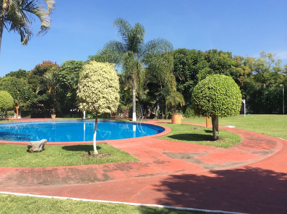 Sun bathing and soccer area, ping pong, jogging path...
