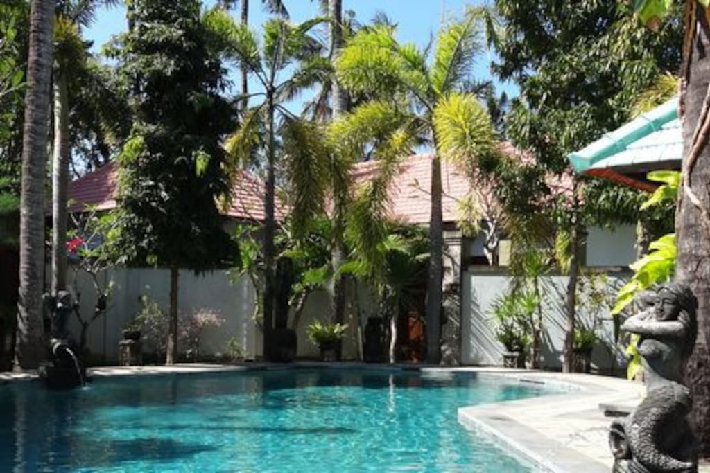 Shared Swimming pool for the 4 villas