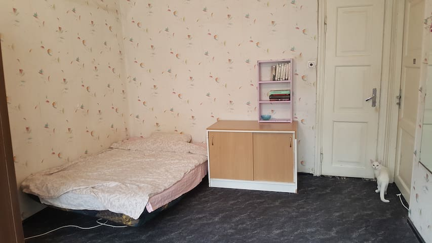 Spacious private room in central apartment - Tallinn - Appartement