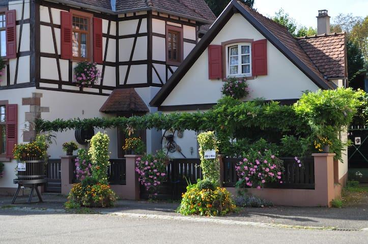 Studio dans quartier historique - Wissembourg - Daire