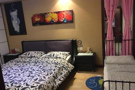 柳巷盘古一号家庭亲子整套公寓(浪漫满屋) - Taiyuan - Wohnung