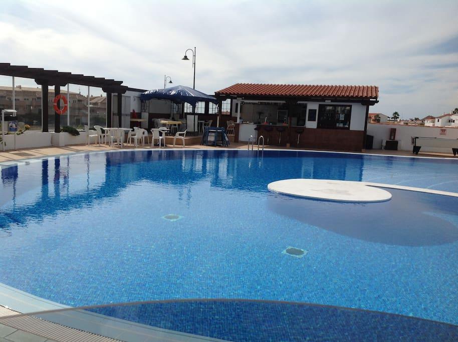 Heated pool and bar.