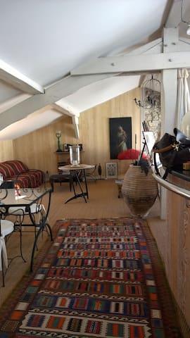 Vaste espace comprenant le séjour, la salle à manger et la cuisine avec son bar .