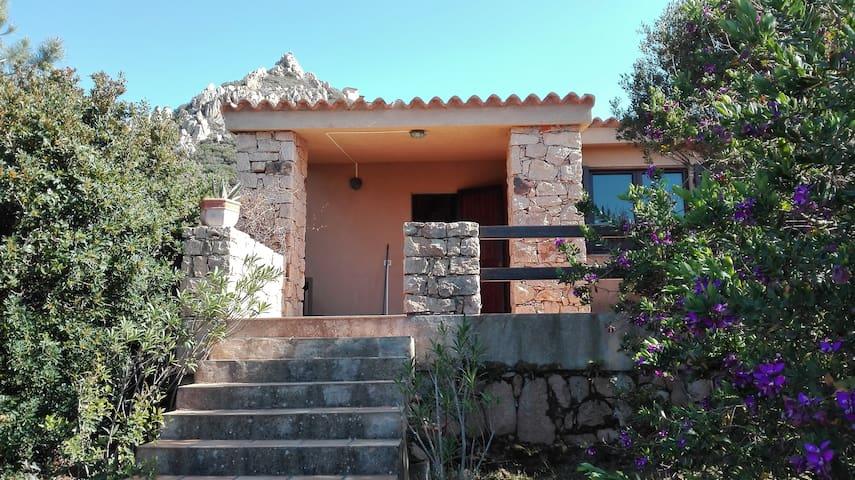 Casa in mezzo alla natura mediterranea - Costa Paradiso - Semesterboende