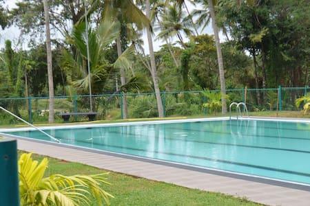 Srilankan style breakfast,huge pool - Galmuruwa,Madampe