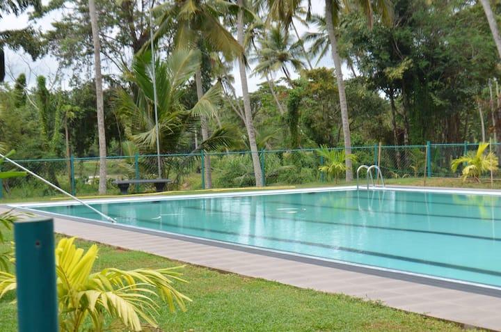 Srilankan style breakfast,huge pool