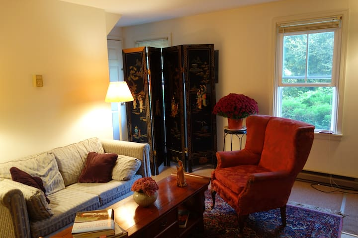 Cozy Apartment in Chestertown - Chestertown - Appartement