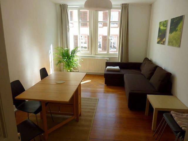 65 m2, in Strasbourg city center