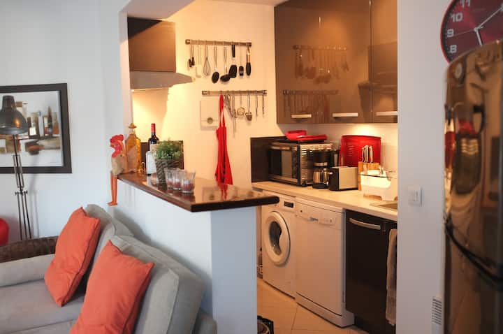 Practical  apartment in central Antibes