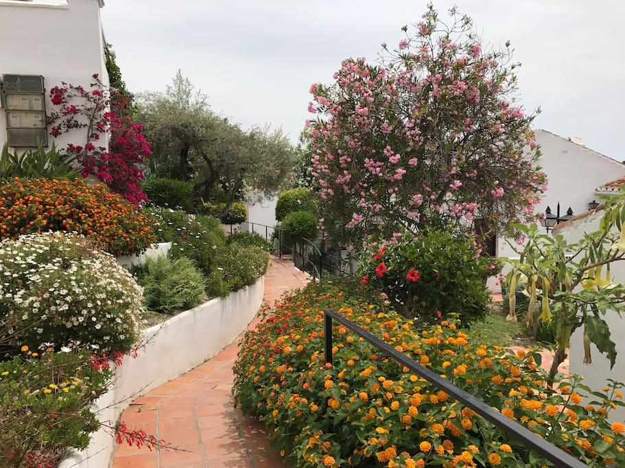 Oasis de Capistrano