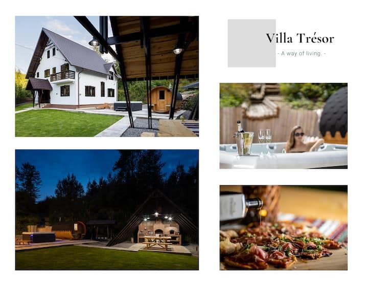 Villa Trésor Voronet