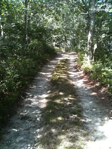 Off the grid on Chappy - Edgartown - Chalet