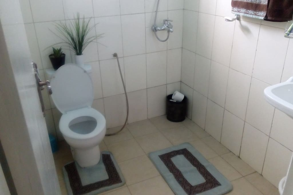 Toilet and telephone shower unit with heater