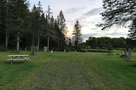 Campsite at adult only campground.