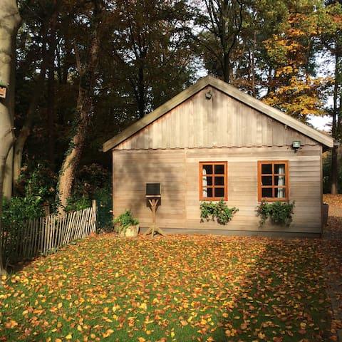 Driener-Bos - Enschede - Cabin