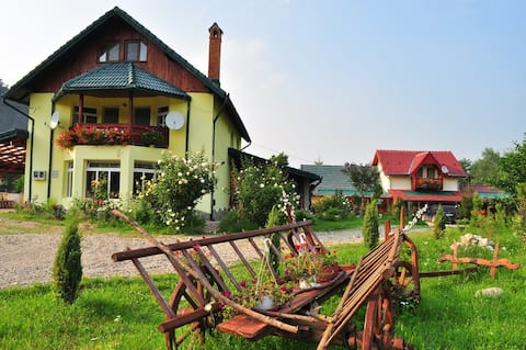 Cotiso Bed&Breakfast a Dacian history -double room