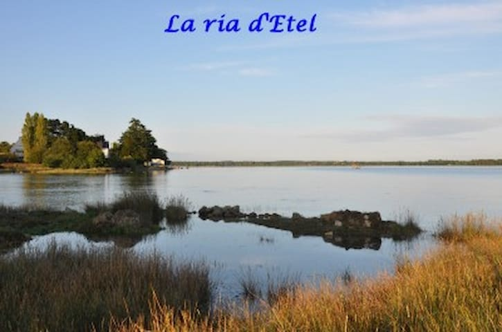 L' ALBATROS - Plouhinec