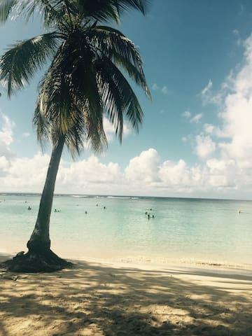 """Studio 3 """"bungalow sur la plage de sable blanc"""""""