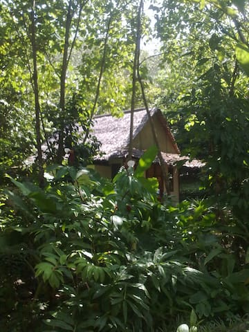 Lovely hut nestled in nature