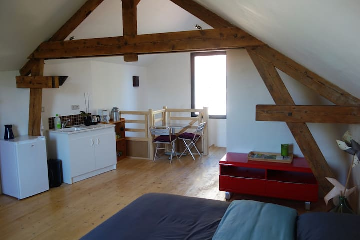 Studio au calme en centre-ville - Niort - Flat