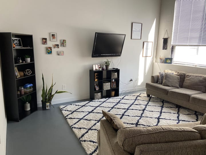 Entire 2 bedroom cozy modern apartment downtown