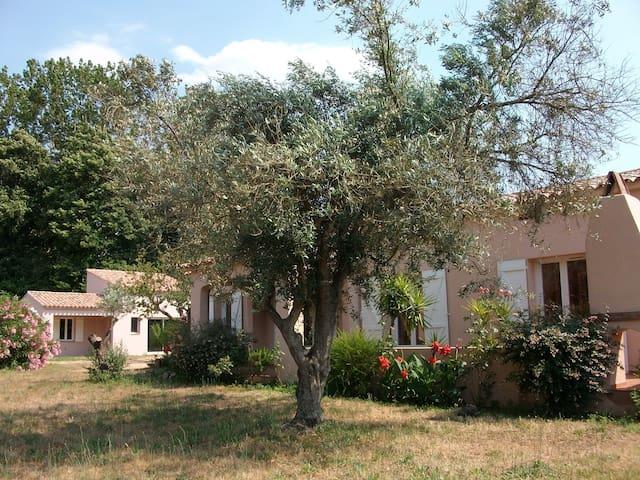 chambre chez l'habitant - Eccica-Suarella - Dom