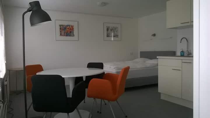 """Maastricht studio """"De Luxe"""""""
