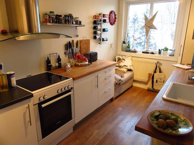 Great location, easy going hosts - Oslo - Apartamento