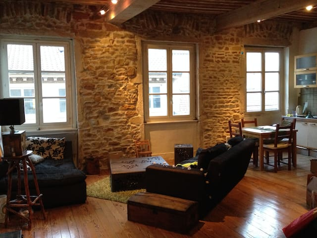"A typical lyon's apartment ""CANUT"" - Lyon - Loft"