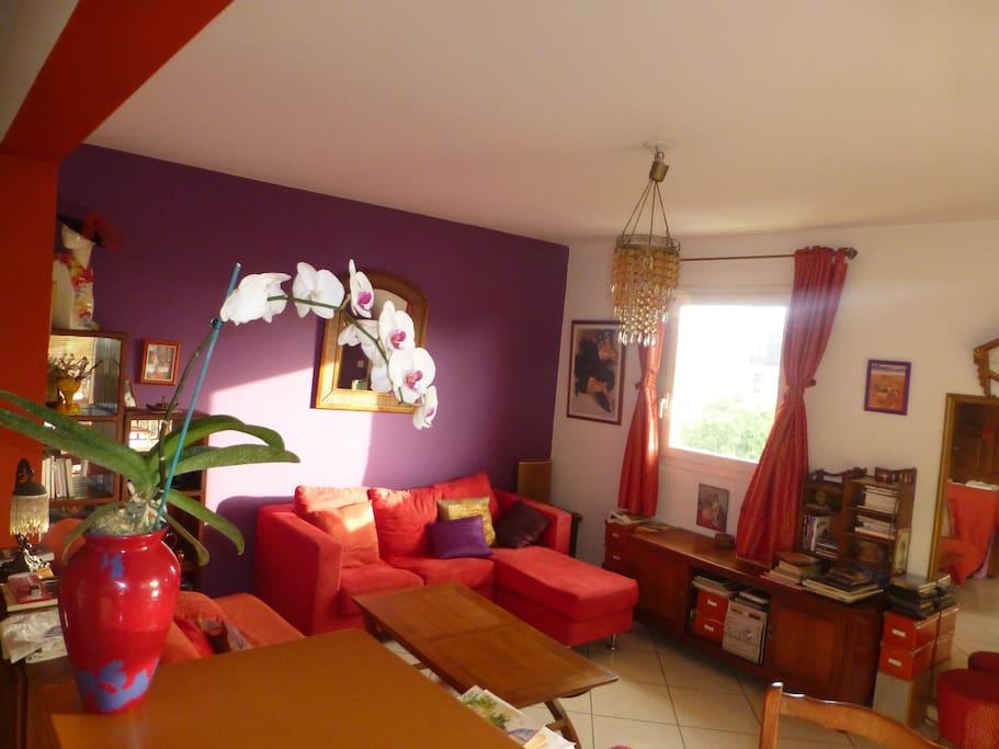 Espace coloré et convivial et aéré avec canapé-lit et divan 3 places